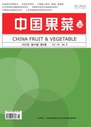 《中国果菜》