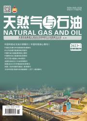 《天然气与石油》
