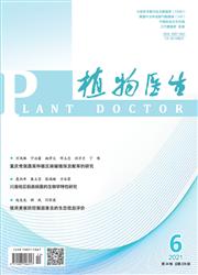 《植物医生》