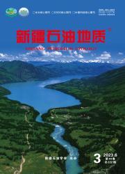 《新疆石油地质》