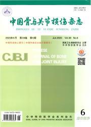 《中国骨与关节损伤杂志》