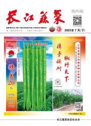 《长江蔬菜》