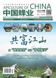 《中国蜂业》