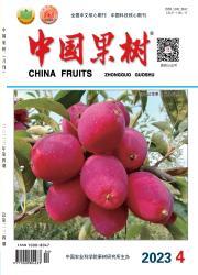 《中国果树》