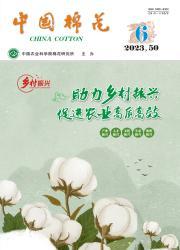 《中国棉花》