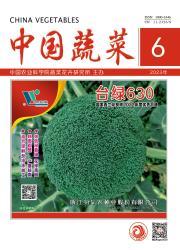 《中国蔬菜》