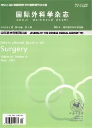 《国际外科学杂志》