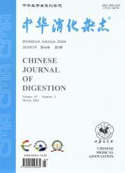 《中华消化杂志》