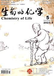 《生命的化学》