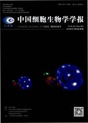 《中国细胞生物学学报》