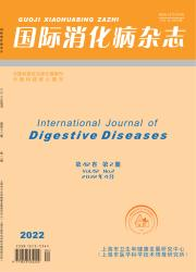 《国际消化病杂志》