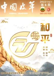 《中国皮革》