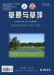 《草原与草坪》