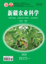 《新疆农业科学》