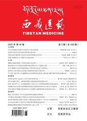《西藏医药》