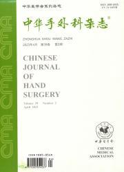 《中华手外科杂志》