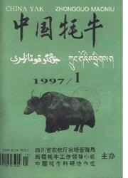 《中国牦牛》