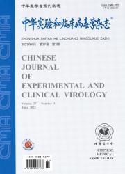 《中华实验和临床病毒学杂志》