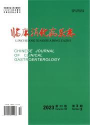 《临床消化病杂志》
