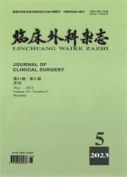 《临床外科杂志》