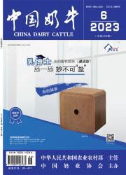 《中国奶牛》
