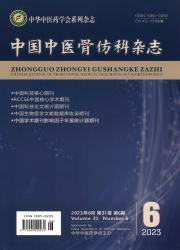 《中国中医骨伤科杂志》