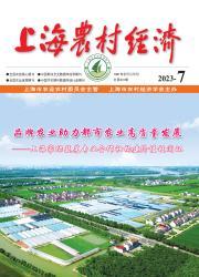 《上海农村经济》