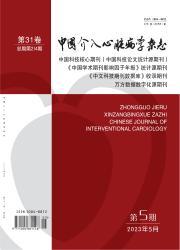 《中国介入心脏病学杂志》
