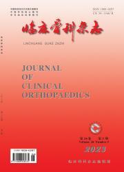 《临床骨科杂志》
