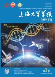 《上海大学学报:自然科学版》