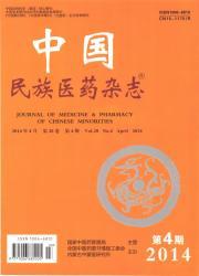 《中国民族医药杂志》