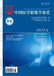 《中国医学影像学杂志》