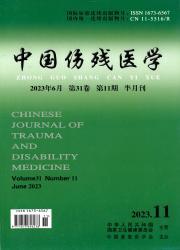 《中国伤残医学》
