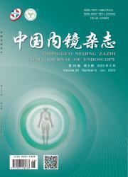 《中国内镜杂志》